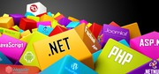 Web Development,  Web Designing,  SEO